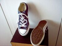 Converse All Star Trainers.