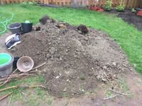 Dirt to be removed from backyard