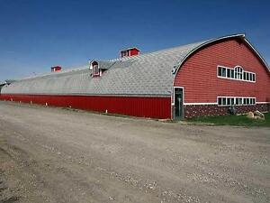 Premium Horse Boarding Facility - just minutes west of Calgary