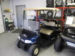 2008 EZGO RXV Golf Cart 48V Blue Electric