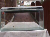 large glass oblong fish tank with lid