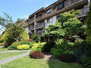 North Vancouver MLS listings of Condos Foreclosures at $517,000