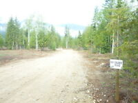 10% Down for either lots G or H 10.94 acres Near Edgewood  B.C.
