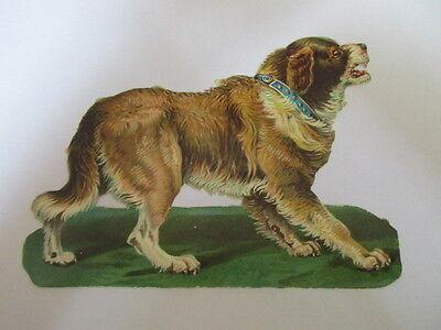 eine wunderschöne alte XL Oblate Glanzbild Hund um 1910 ca. 11 x 14 cm