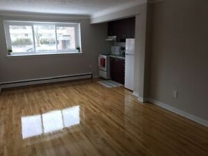 1 bedroom apartment in excellent west-end location