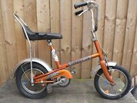 Raleigh budgie child's bicycle (wanted)