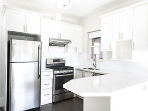 Renovated 3 Bedroom Apartment Across From Ossington Station