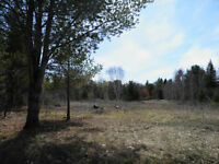 Land for Sale in the Sault!