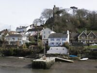 The Swan Inn in Noss Mayo has a beer garden to the front with spectacular views down the creek.