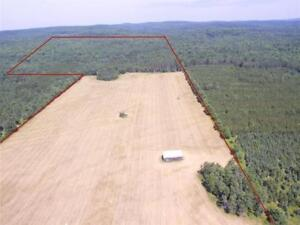 3 Beautiful Hunting lots for rent for deer season zone 10West
