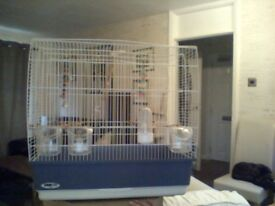 Bird cage. In great condition and includes all the accessories.