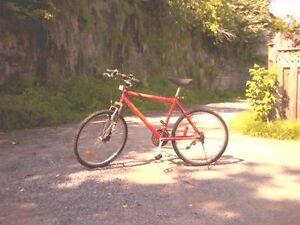 velo  pour route et trail Québec City Québec image 2