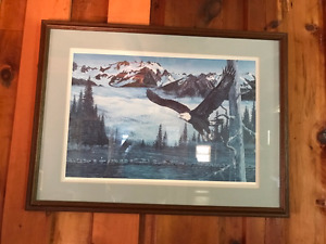 Ducks Unlimited Canada Painting