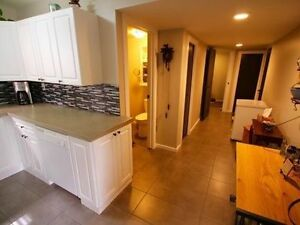 2 Bedroom, daylight suite lower Aberdeen - Newly Renovated