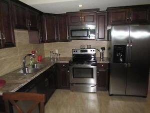 1 bdr. Basement suite for rent from 1st of December