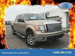 2011 Ford F-150 XLT, One Owner, Chrome boards, Accident Free!!