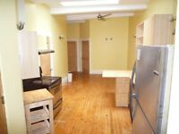 Affordable 4 bedroom in the heart of the Plateau Mont-Royal