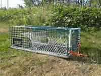 For sale wire lobster traps