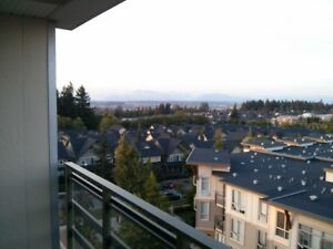 South Surrey Executive Furnished 2bed/2bath Condo