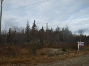 Meadow Cove Rd. (Lot E), Dipper Harbour (Water Access)