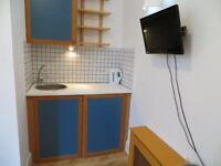 Single Studio Apartment on the Ground Floor - Hammersmith