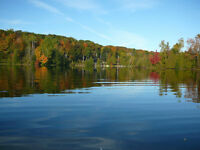 North Frontenac 0.66 acre building lot 101' on Kashwakamak Lake