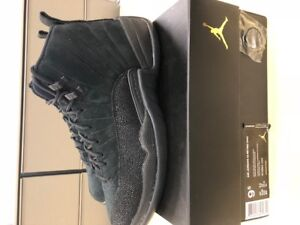 Jordan 12 OVO Size 9.5 VNDS