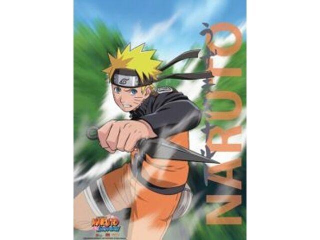 Naruto Wall Scroll GE5249