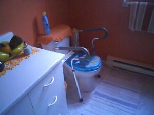 Bras de toilette