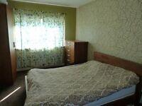 Nice bedroom for rent