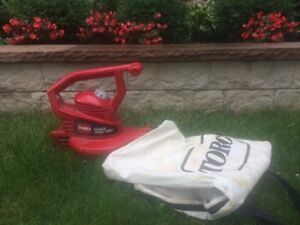 Toro Electric Rake and Vac Leaf Blower