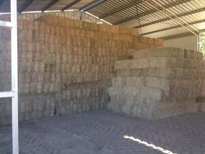 Hay for sale Booubyjan Gympie Area Preview