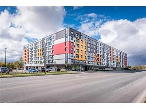 Great Investment opportunity near University of Guelph