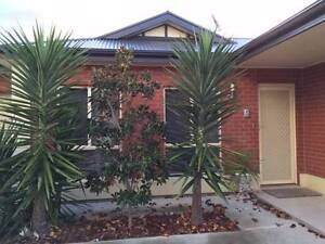 Contemporary & Stylish House in Courtyard, Must see ! Call Now West Richmond West Torrens Area Preview