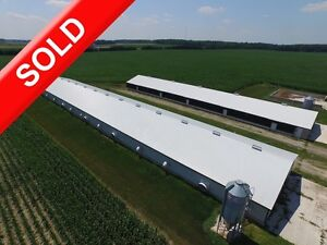SOLD: Modern Poultry Farm w 4 Bdrm, Shop & Corn in Hensall!