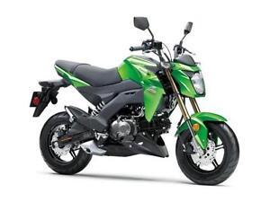 2017 Kawasaki Z125Pro Green