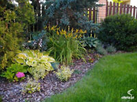 Professional Landscaping and Property Maintenance