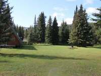 New Price for 20 Acres Waterfront Cabin