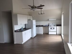 2 bedroom - North Oshawa - newly renovated