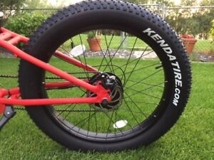 Brand New Steed Fat Tire Electric Bike - Only $1,500!