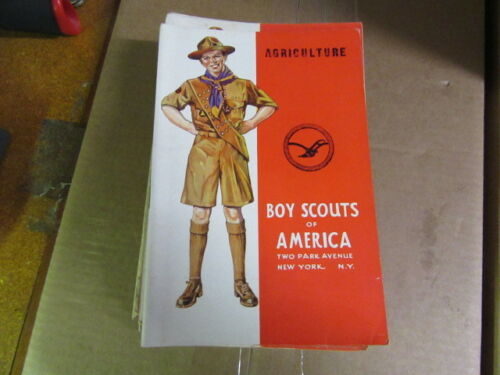 Boy Scout Standing Cover Merit Badge Pamphlets, Lot of 22 1940
