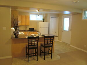 Ideal for single professional- 1 bed w/gas fireplace avail July