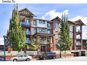 209-5650 201A St, Langley