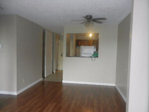 3BDRM CONDO FOR RENT. OCT 1ST. CLAREVIEW NE. *PET FRIENDLY*