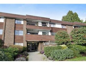 North Vancouver Fixer Upper Condos from $319,000 North Shore Greater Vancouver Area image 10