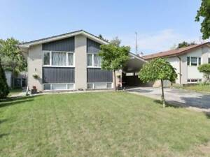 Bungalow On A Massive Lot For Sale In Central Brampton!