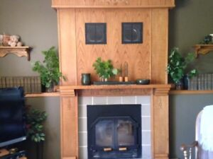 BIS high energy efficient wood burning stove fireplace
