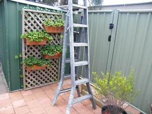 6 FT STEP LADDER Forster Great Lakes Area Preview