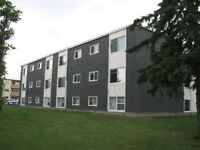NAIT / 1 BEDRM RENOVATED BRIGHT APARTMENT GREAT LOCATION