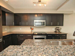 Gorgeous Brand New Furnished Condo for Rent in Cloverdale!!! Edmonton Edmonton Area image 2